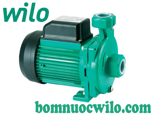 Máy bơm cấp nước lưu lượng lớn không tự mồi WiLo PUN-250E