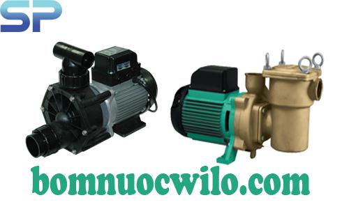 Phân loại máy bơm nước hồ bơi Wilo và hướng dẫn cách lắp đặt máy bơm